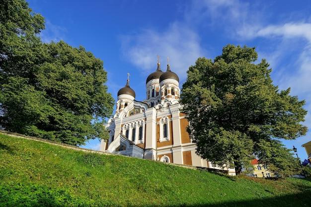 공공 공원의 나무에서 나오는 탈린 정교회 대성당.