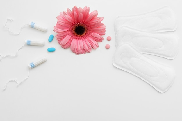 탐폰 패드는 위생 보호를 선택합니다 월경 기간 건강 월경 규칙적인 사이클 개념