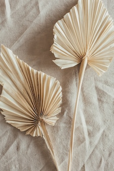 Tan fan craft leaves on beige washed linen cloth