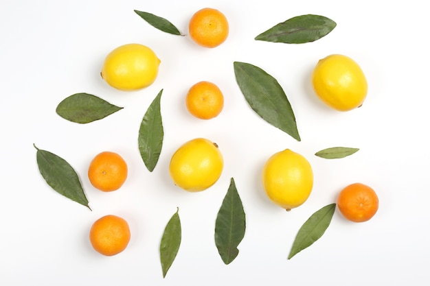 Мандарины и лимоны с листьями на белом фоне. вкусная здоровая витаминная еда