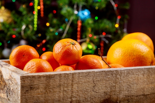 Tangerines as fir-tree toy and branch with boke