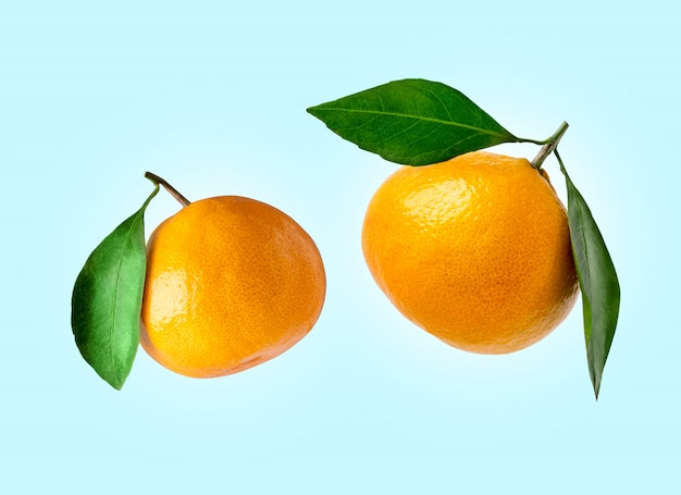 Tangerines of different shapes with leaf