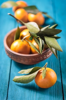 Tangerines with leaves