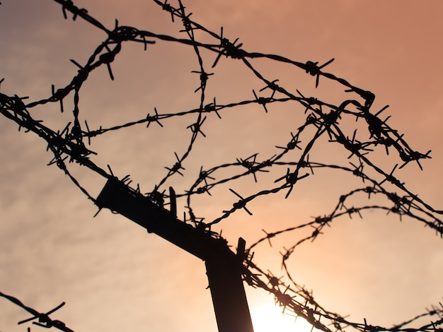 Tangle of barbed wire against the morning sky, silhouette photo effect.