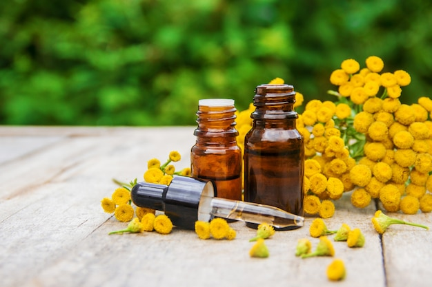 Tansy medicinal extract, tincture, decoction, oil, in a small bottle.