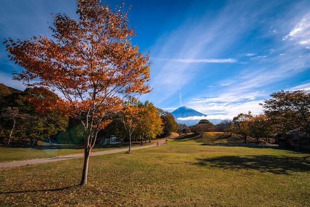 Благоустраивайте изображение горы фудзи над озером tanuki с листвой осени на восходе солнца в fujinomiya, японии.