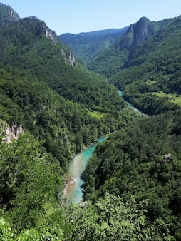 モンテネグロのタラ川渓谷