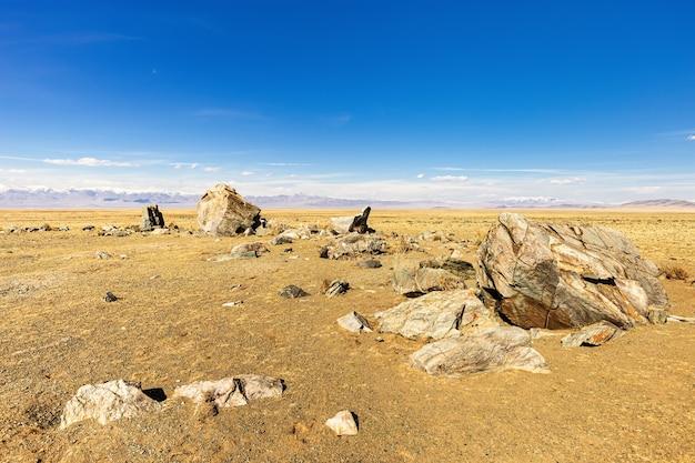 추이 스텝 알타이 공화국 러시아의 타르카틴스키 거석 복합 고고학 기념물