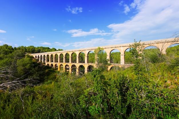Антикварный акведук в летнем лесу. tarragona