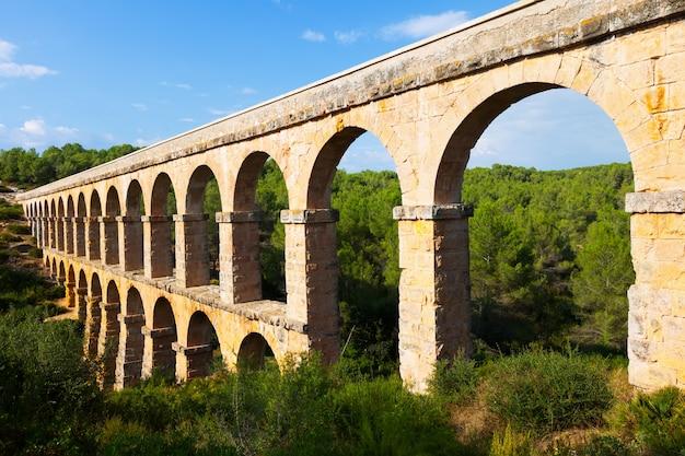 Древний акведук в летнем лесу. tarragona