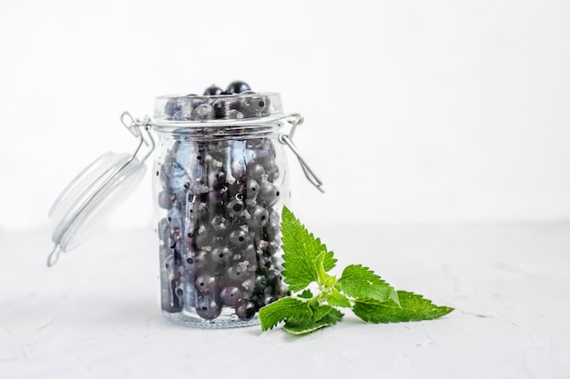 Tasty black currant with mint in a glass jar. white background.