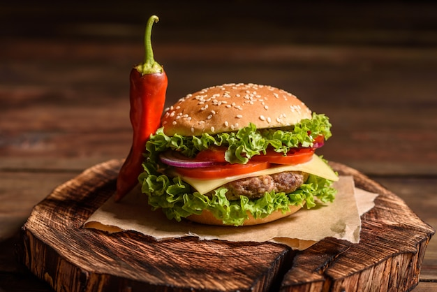 Tasty grilled homemade burger with beef