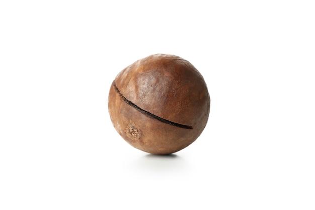 Tasty macadamia nut isolated on white