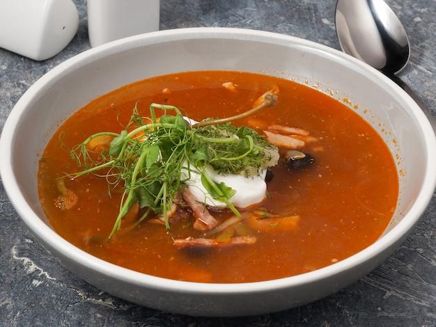 맛있는 고기 solyanka 여러 종류의 고기와 함께 전통적인 러시아 수프