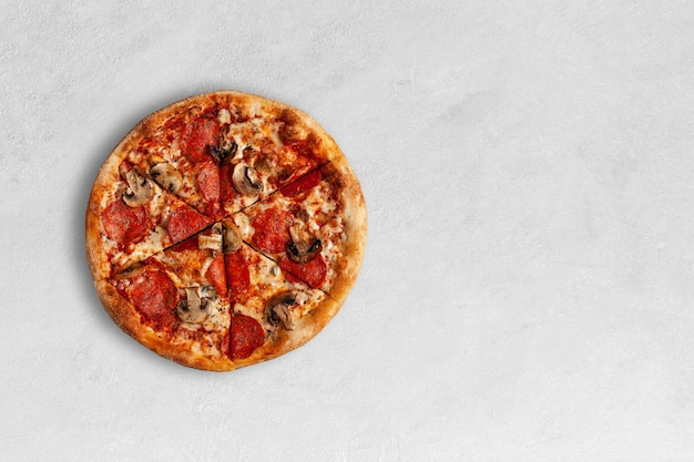 Tasty pizza with salame and mushrooms with copy space.
