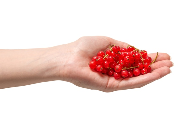 Tasty red currant in woman hand isolated on white background. top view.