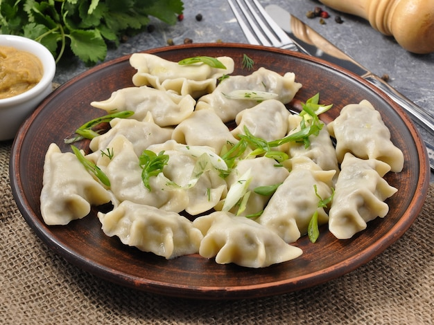 Tasty russian meat dumplings decorated with red onions and herbs