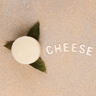 Tasty spanish manchego cheese over bay leaves with cheese text on marble background
