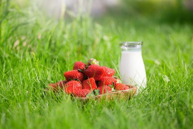 Tasty straberry with milk