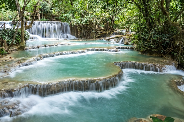 Tat kuang si waterfalls. beautiful waterfalls in luang prabang, laos.
