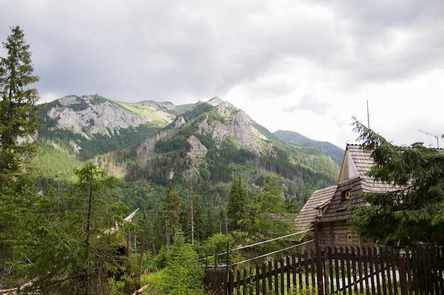 Деревянная хата под горами tatra в zakopane, польше. татры в польше и словакии. рядом морской глаз и черный пруд. красивая природа, озера и реки. национальный парк татры, польша.