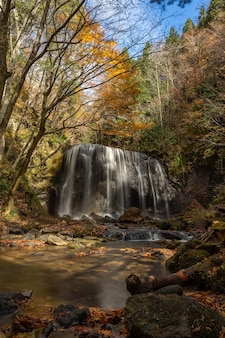 Водопад тацудзавафудо осенью осенний сезон в фукусиме. есть водопад в инавасиро, фукусима, япония.