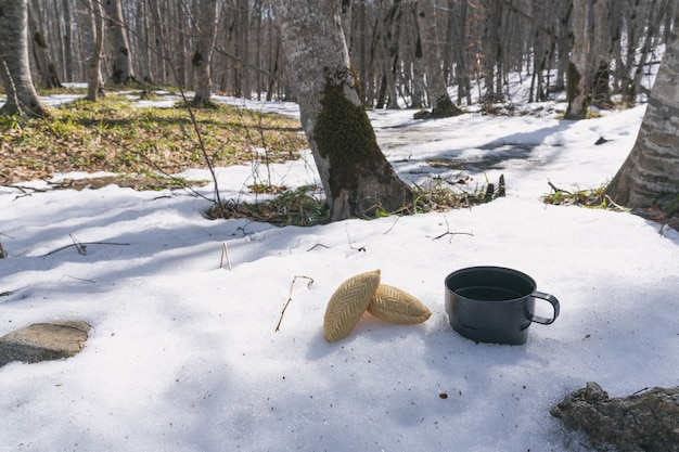 Tea drinking in nature, picnic
