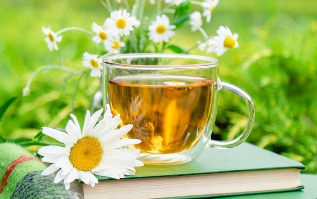 차. 책에 카모마일 꽃과 정원에서 자연과 야외 따뜻한 격자 무늬와 카모마일 허브 차 유리 컵.