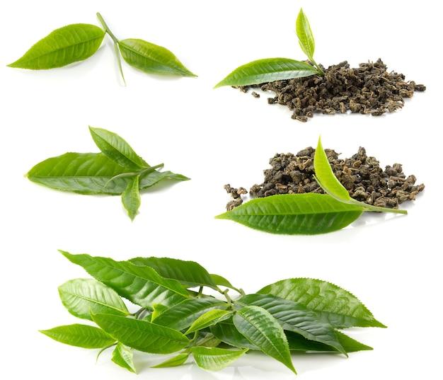 茶葉、白い背景に乾燥したお茶。