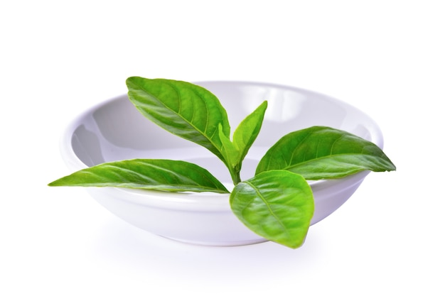 Tea leaves on white background