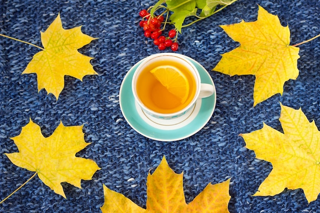 Tea mug with lemon on a knitted background with maple leaves and a notebook
