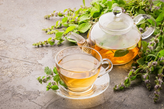 Tea with fresh leaves of lemon mint cup and teapot gray