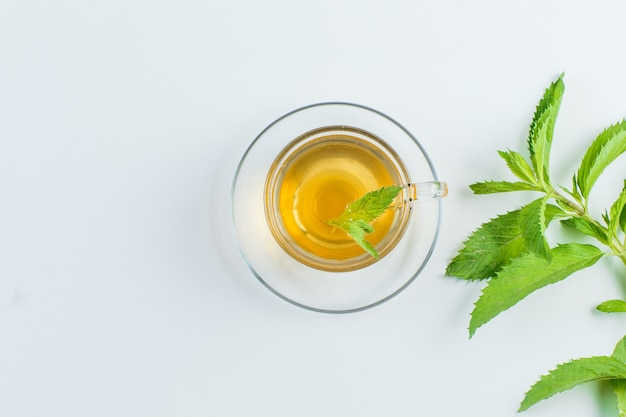 Tea with herbs in a mug on white background, flat lay.