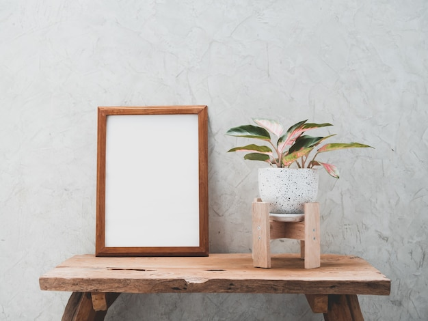 Teak wood frame mock up and aglaonema houseplant in modern white and black ceramic container