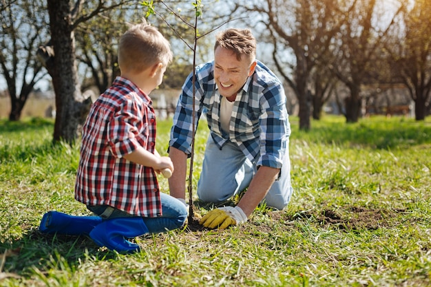 Team of father and son grinning broadly while planting a new fruit tree in a backyard in spring