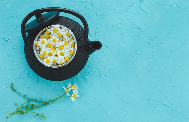 Teapot with camomile flowers on a blue background