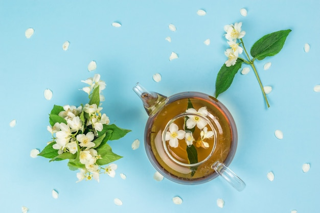 Teapot with jasmine tea and jasmine flowers on a blue surface. an invigorating drink that is good for your health.