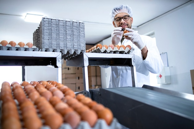 기술자가 닭고기 달걀의 품질을 확인하고 식품 가공 공장에서 표시합니다.