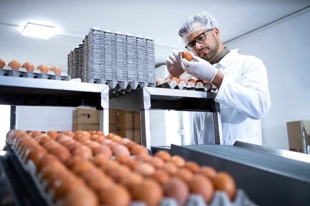 식품 가공 공장 또는 농장에서 산업적으로 생산 된 계란을 검사하는 흰색 코트 및 헤어 넷의 기술자.