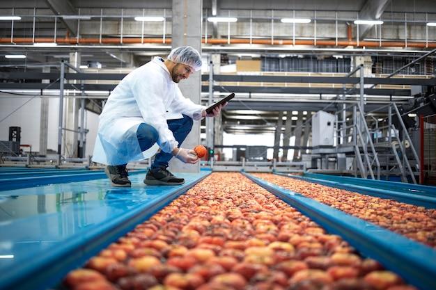 식품 가공 공장에서 사과 과일 생산의 품질 관리를 수행하는 물 탱크 컨베이어 옆에 태블릿 컴퓨터가있는 기술자.