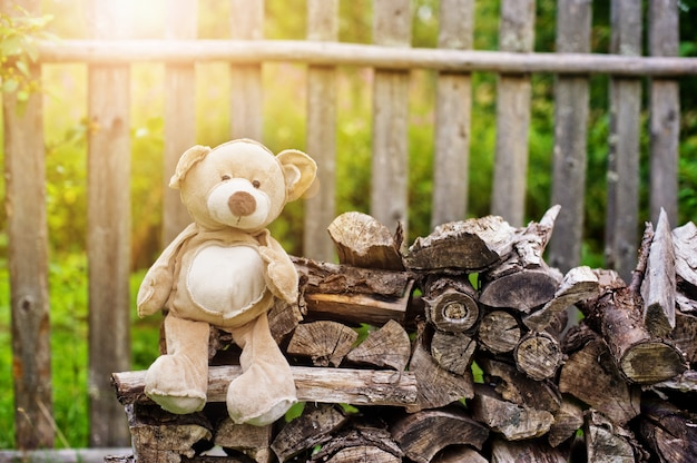 Teddy bear on the bench in the village