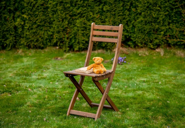 Teddy bear and book on wooden chair on green grass in spring