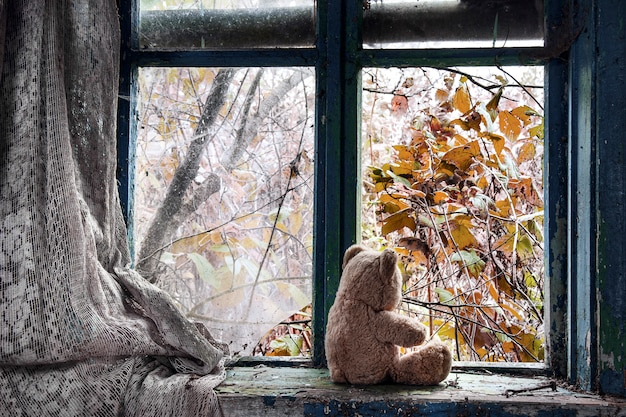 A teddy bear by the window in an abandoned house.