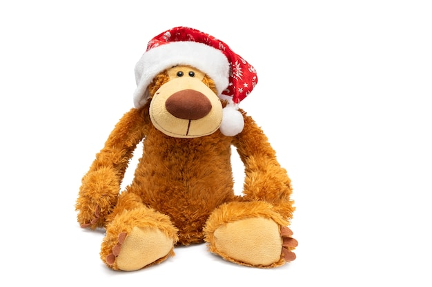 Teddy bear in a christmas hat on a white background.