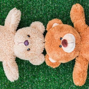Teddy bear couple on the green grass