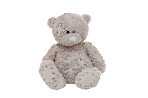 Teddy bear gray isolated on white