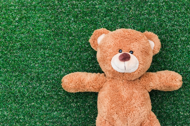 A teddy bear on a green grass background
