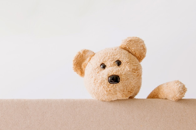 Teddy bear holding on board with white background
