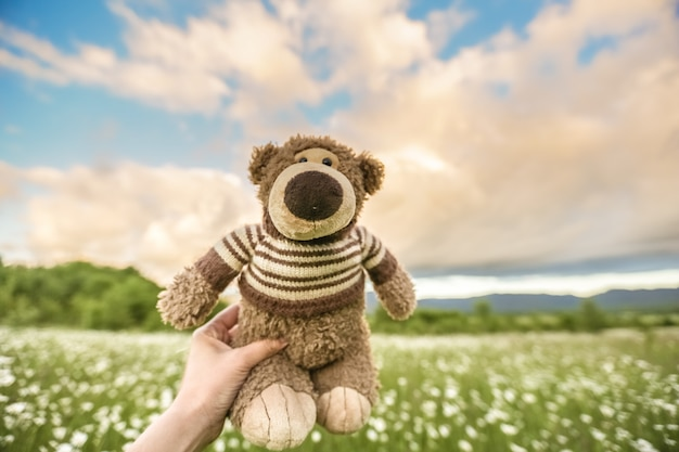 A teddy bear holding a man's hand on a background of a meadow with daisies and the sky
