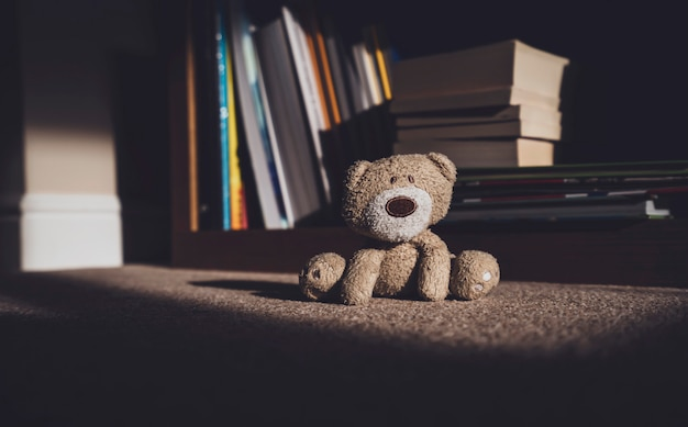 Teddy bear is sitting down on carpet next to blurry bookshelf background in retro filter
